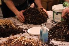 confection-oite-champignon-soiree-alternative