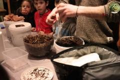 explications-fabrication-boite-champignon-soiree-alternative