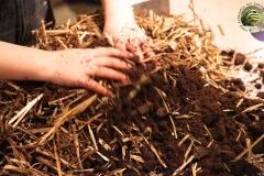 melange-substrat-boite-champignon-soiree-alternative