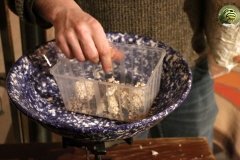 mycelium-ble-boite-champignon-soiree-alternative