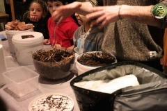 recyclage-animation-boite-champignon-soiree-alternative
