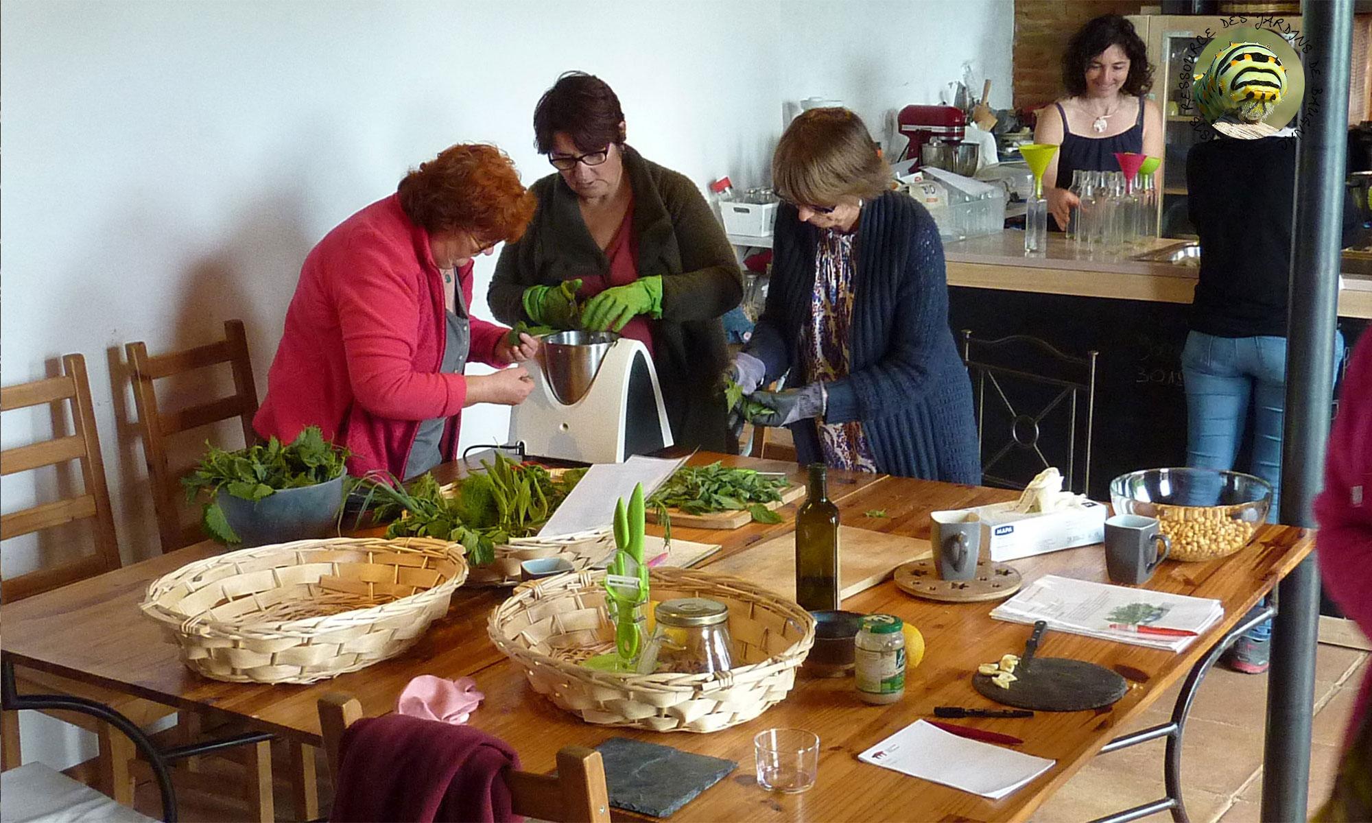 atelier-transformation-plantes-médicinales