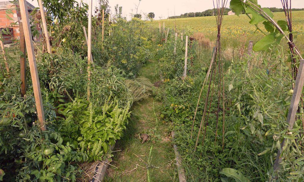 Les allées du verger jardiné de Baugnac.