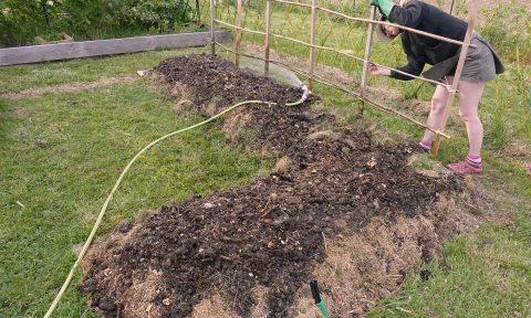Atelier pour apprendre à faire un jardin ou un potager en lasagne, les Ateliers en Herbe.