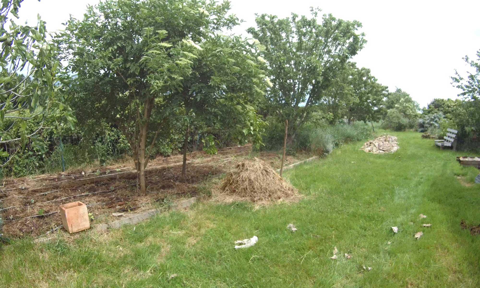 Co-création au jardin forêt de Baugnac, Lavalette.