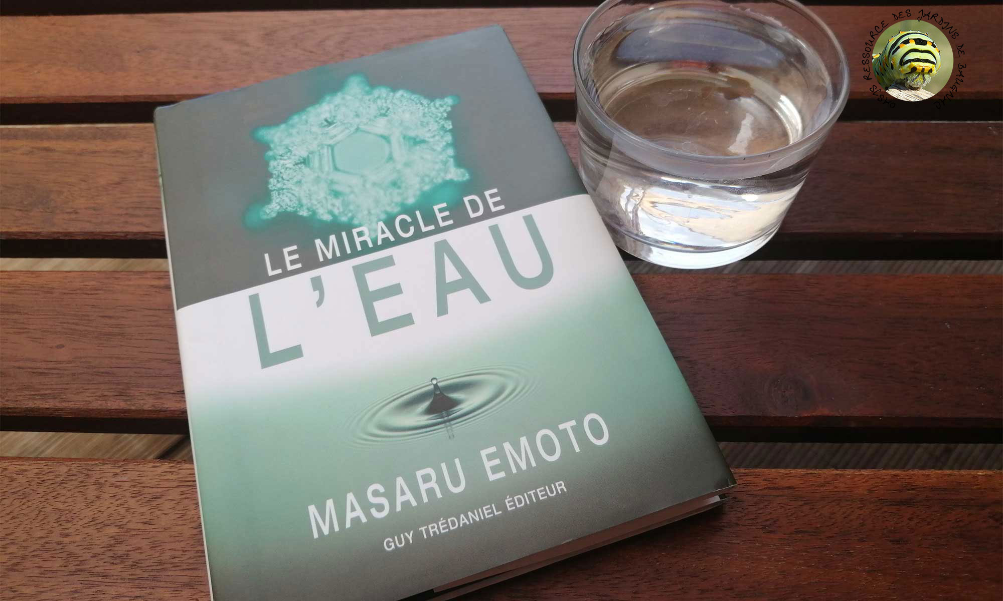 Le miracle de l'eau de Masaru Emoto.