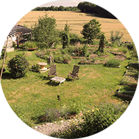 Oasis ressource des jardins de Baugnac, Colibris.